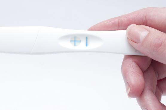 Free Pregnancy Testing